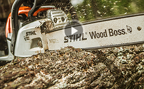Maintain Your Chainsaw