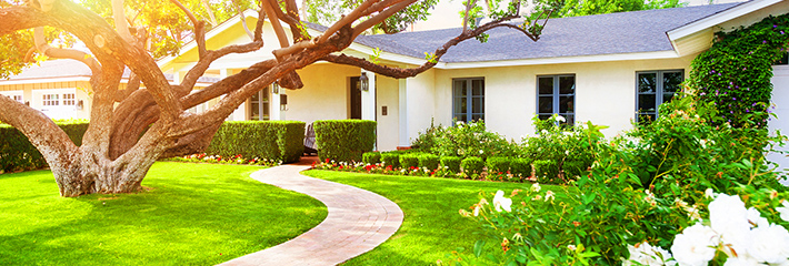 Add Curb Appeal to Your Home