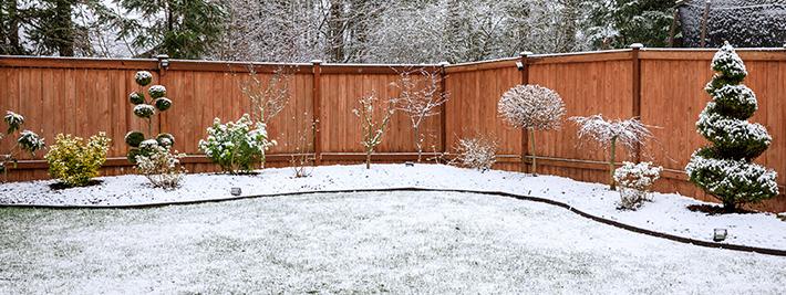 Winter Landscaping Lawn Care Tips Seasonal Maintenance Stihl Usa