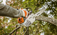 in-tree-saws