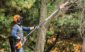 Pole Pruners & Power Pole Saws   Reviews   STIHL USA