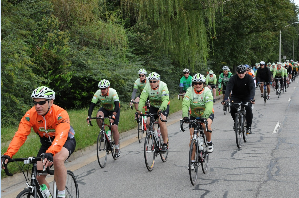 STIHL Tour des Trees (photo credit: Alvin Gilens)