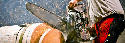 Hot Saw Competition Stihl Hot Saw Racing Stihl Usa